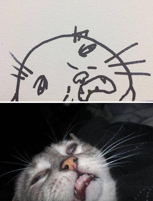 猫のイラストの画像(5枚目)