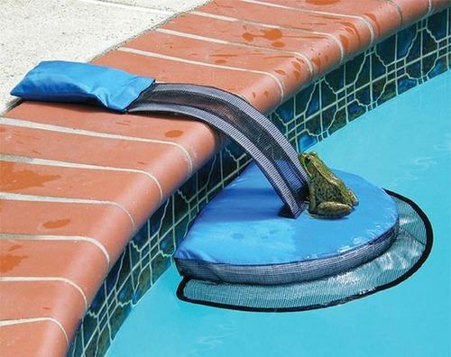 プールに落ちた動物を救うアイテムの画像(1枚目)