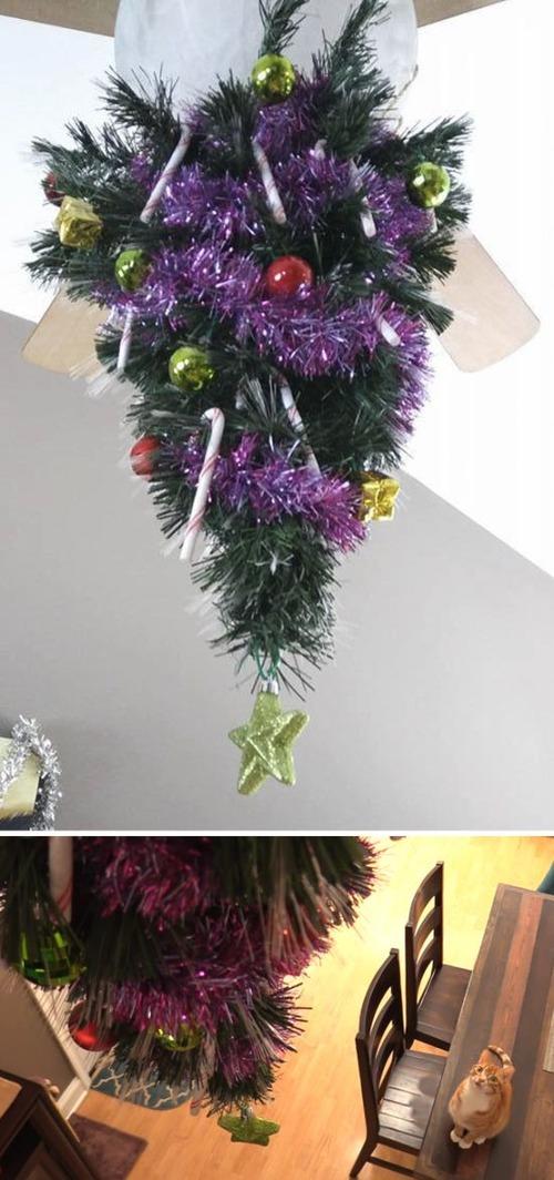 ペットと過ごすクリスマスの画像(31枚目)