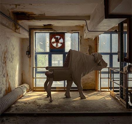 まるで本物!超リアルな動物の椅子が凄いwwwの画像(8枚目)