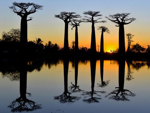ナショナル・ジオグラフィック2015年の旅行部門のベスト写真の数々!!の画像(24枚目)