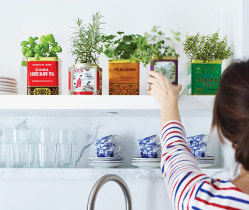 【画像】狭くても大丈夫!小さな植木が綺麗に飾れる工夫の数々!の画像(2枚目)