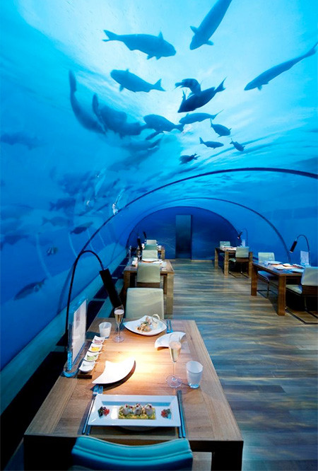 水中レストラン02