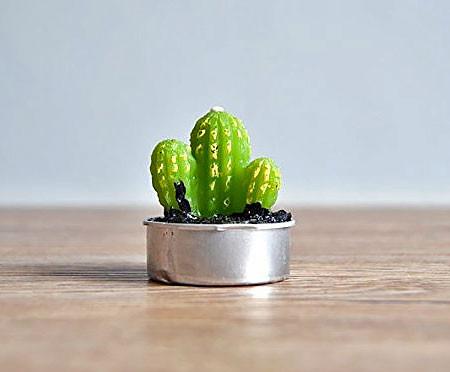 サボテンに見える小さなキャンドルの画像(4枚目)