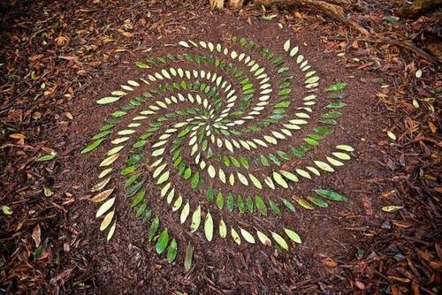 自然の素材を使ったアートの画像(11枚目)