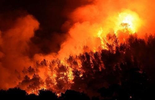フランスのマルセイユの山火事の画像(24枚目)