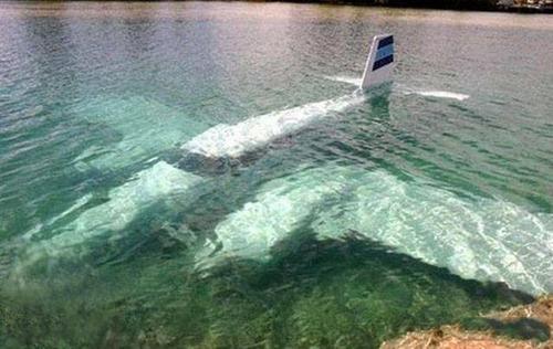 驚きの航空機の画像(21枚目)