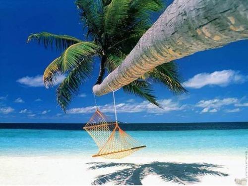 【画像】地上最後の楽園と呼ばれている「ボラボラ島」の絶景!の画像(5枚目)