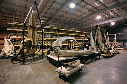 【画像】アメリカを代表するスミソニアン博物館の標本の保存倉庫が凄い!!の画像(11枚目)
