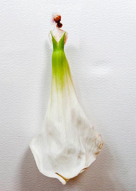 本物の花で描いたアートが華やかで癒される!!の画像(18枚目)