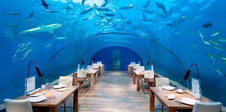 水中レストラン01