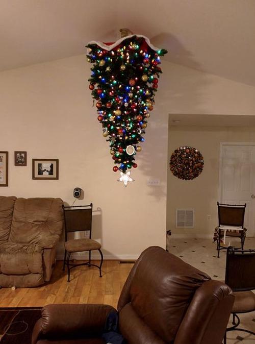 ペットと過ごすクリスマスの画像(26枚目)