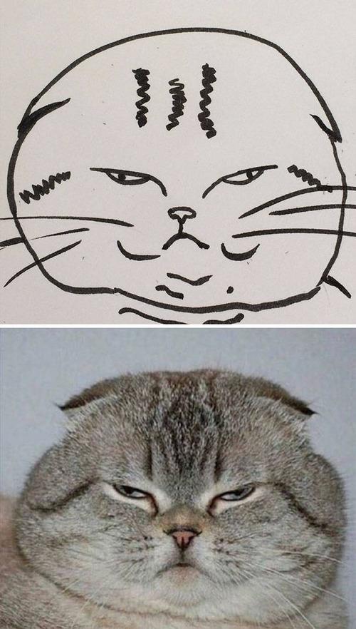 猫のイラストの画像(3枚目)