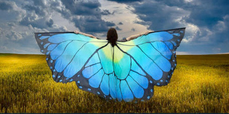 蝶や白鳥に見える美しいマントの画像1