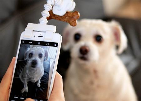 犬の笑顔が撮れるスマホ用ガジェット02