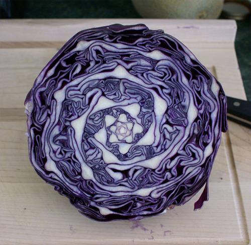 色や形が完璧に整った食べ物の画像(46枚目)
