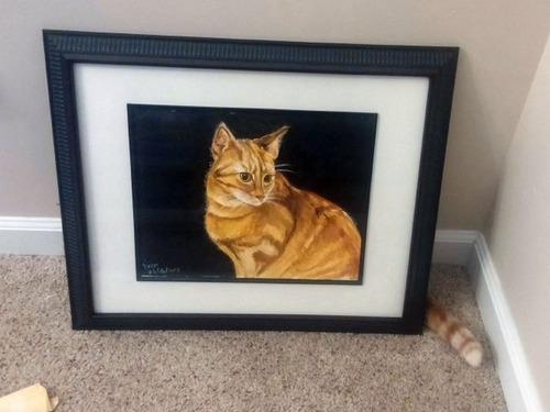 隠れているつもりの猫の画像(2枚目)