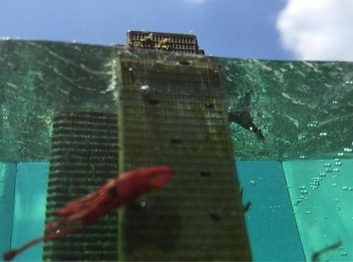 【画像】小さいのに超リアル!水没都市のジオラマが凄い!!の画像(9枚目)