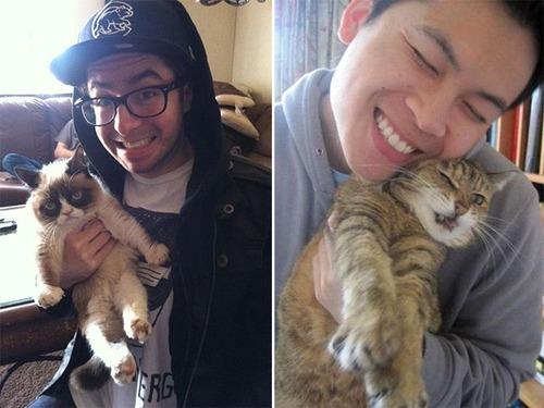癒そうな猫の画像(9枚目)