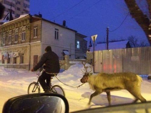 【画像】ロシアなら当たり前!ちょっと信じられないロシアの日常風景wwの画像(1枚目)
