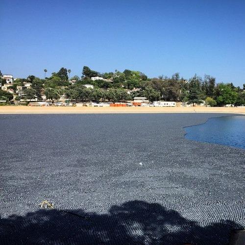 【画像】ダムに20000個の謎のボールを投入して、水面が真っ黒になっている!!の画像(2枚目)