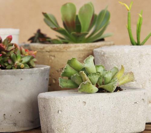 【画像】狭くても大丈夫!小さな植木が綺麗に飾れる工夫の数々!の画像(16枚目)
