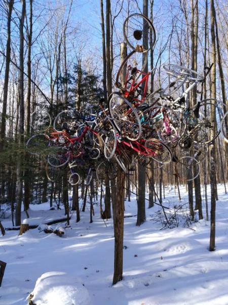 冬を楽しむカナダの人達の画像(15枚目)
