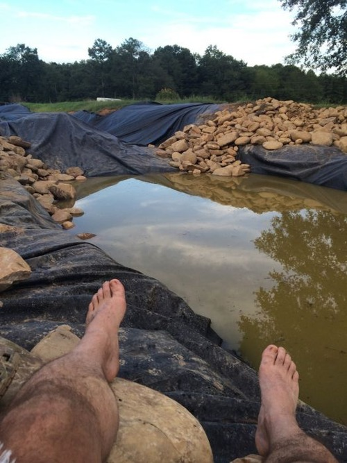 巨大な池の画像(10枚目)
