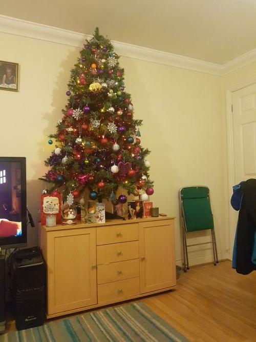ペットと過ごすクリスマスの画像(20枚目)