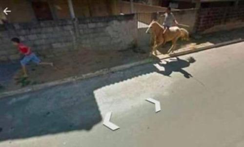 面白Googleストリートビューの画像(7枚目)