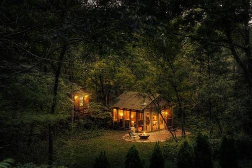 森の中の隠れ家の画像(47枚目)