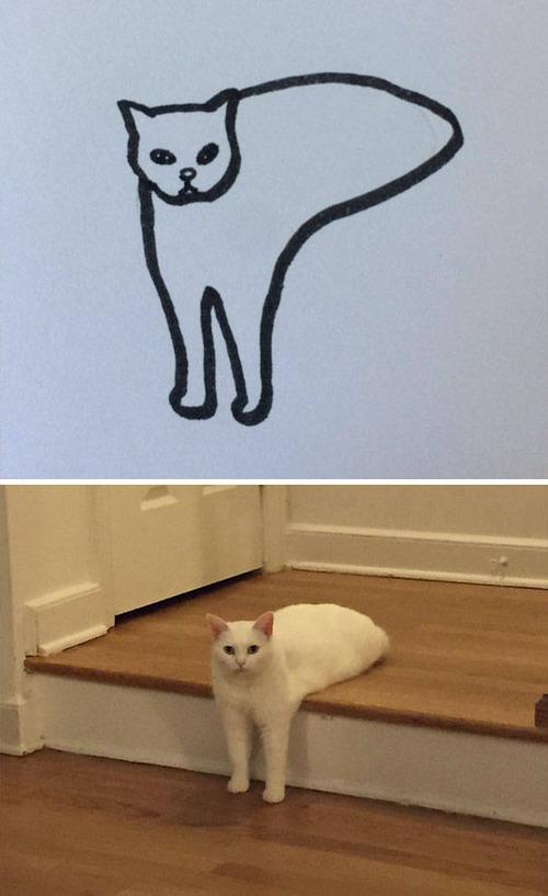 猫のイラストの画像(7枚目)