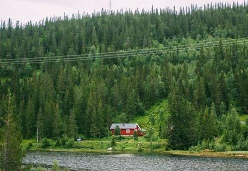森の中の隠れ家の画像(31枚目)