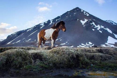 アイスランドの風景の画像(43枚目)