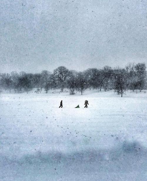【画像】大雪のニューヨークで日常生活が大変な事になっている様子!の画像(9枚目)