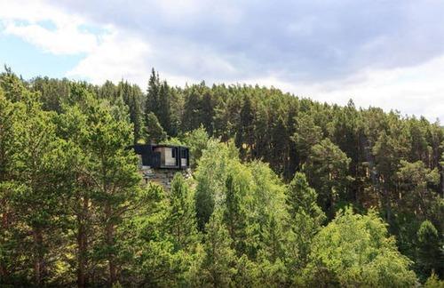 森の中の隠れ家の画像(7枚目)