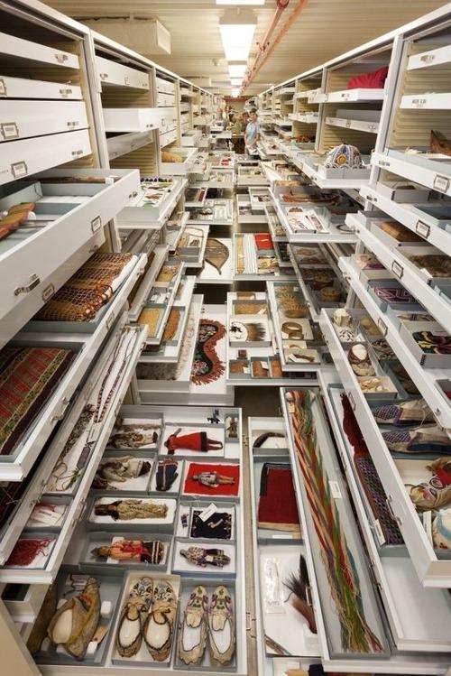 【画像】アメリカを代表するスミソニアン博物館の標本の保存倉庫が凄い!!の画像(3枚目)