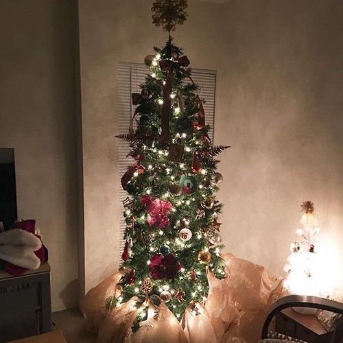 ペットと過ごすクリスマスの画像(8枚目)