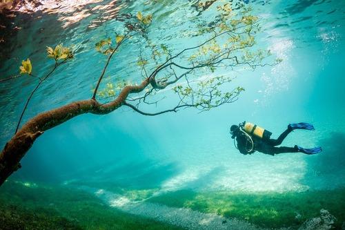 美しく神秘的な水辺の画像(20枚目)