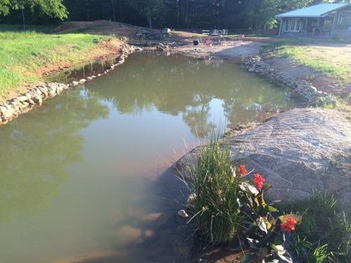 巨大な池の画像(22枚目)