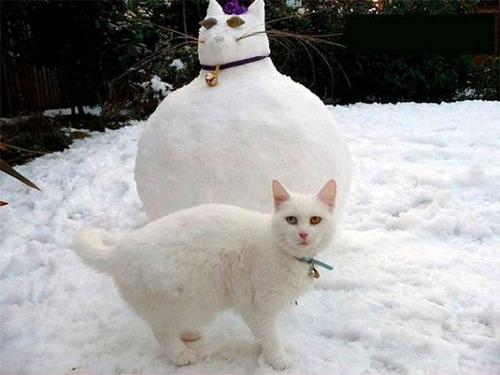 面白い雪だるまの画像(36枚目)