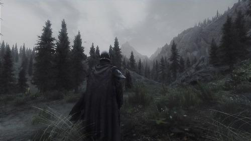 テレビゲームの風景の画像(33枚目)
