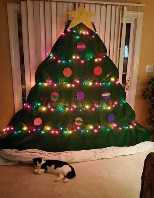 ペットと過ごすクリスマスの画像(23枚目)