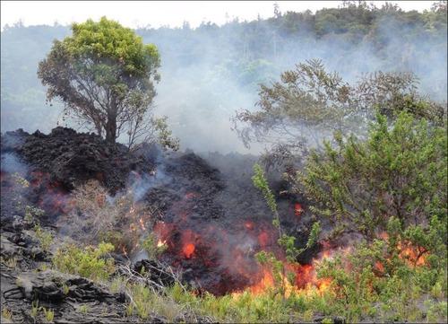 キラウエア火山から海に流込む溶岩の画像(4枚目)