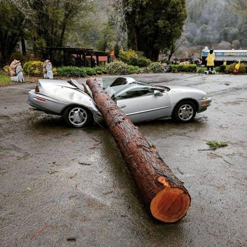 悲惨すぎる自動車のトラブルの画像(8枚目)