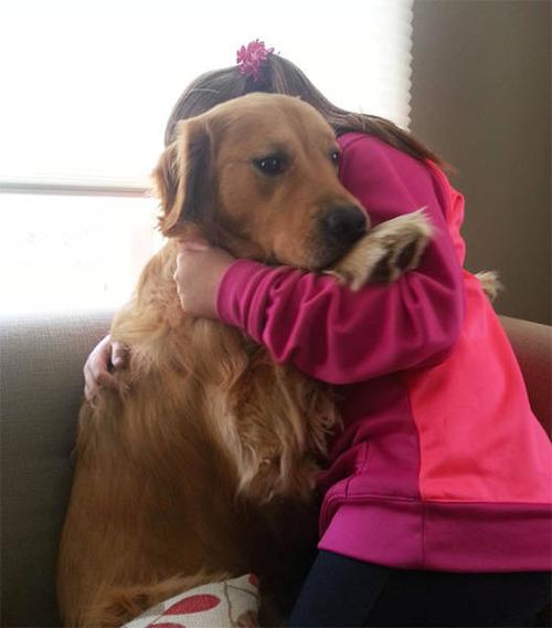怯えてる犬の画像(20枚目)