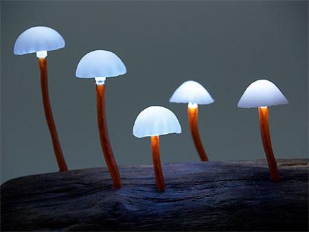 本物のような光るキノコのようなライトが可愛い!!の画像(12枚目)