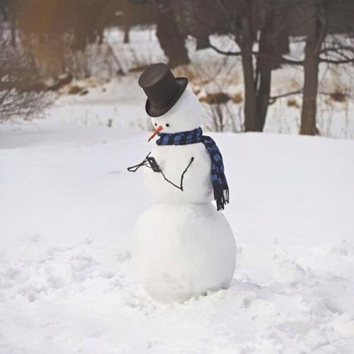 面白い雪だるまの画像(33枚目)