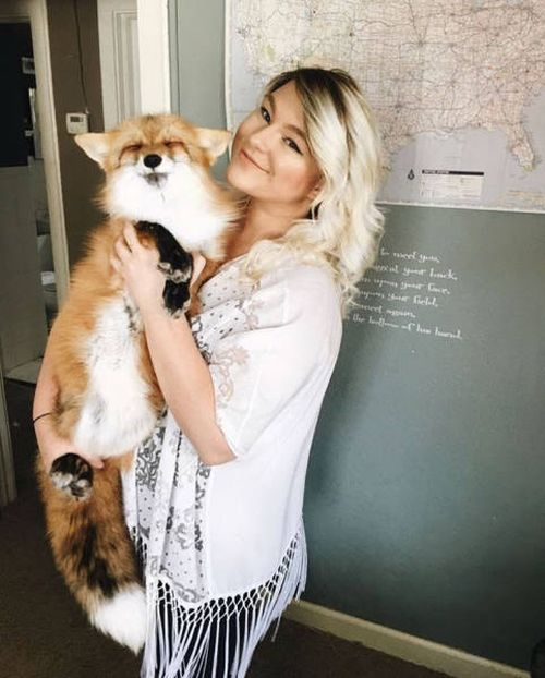 犬とキツネは仲良くなれる!犬とキツネが仲良くしている画像の数々!!の画像(11枚目)
