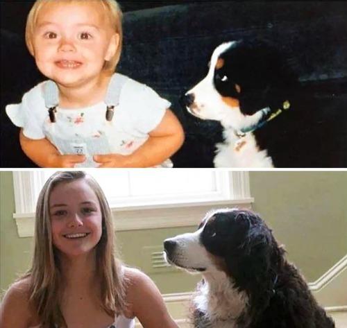 犬の成長の画像(21枚目)